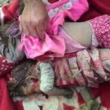 استشهاد 3 نساء وطفل إثر شن طيران العدوان عدد من الغارات على منطقة سفيان بعمران