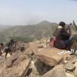 الجيش واللجان  يتمكنون من السيطره على مواقع للمنافقين في حيفان  محافظة تعز